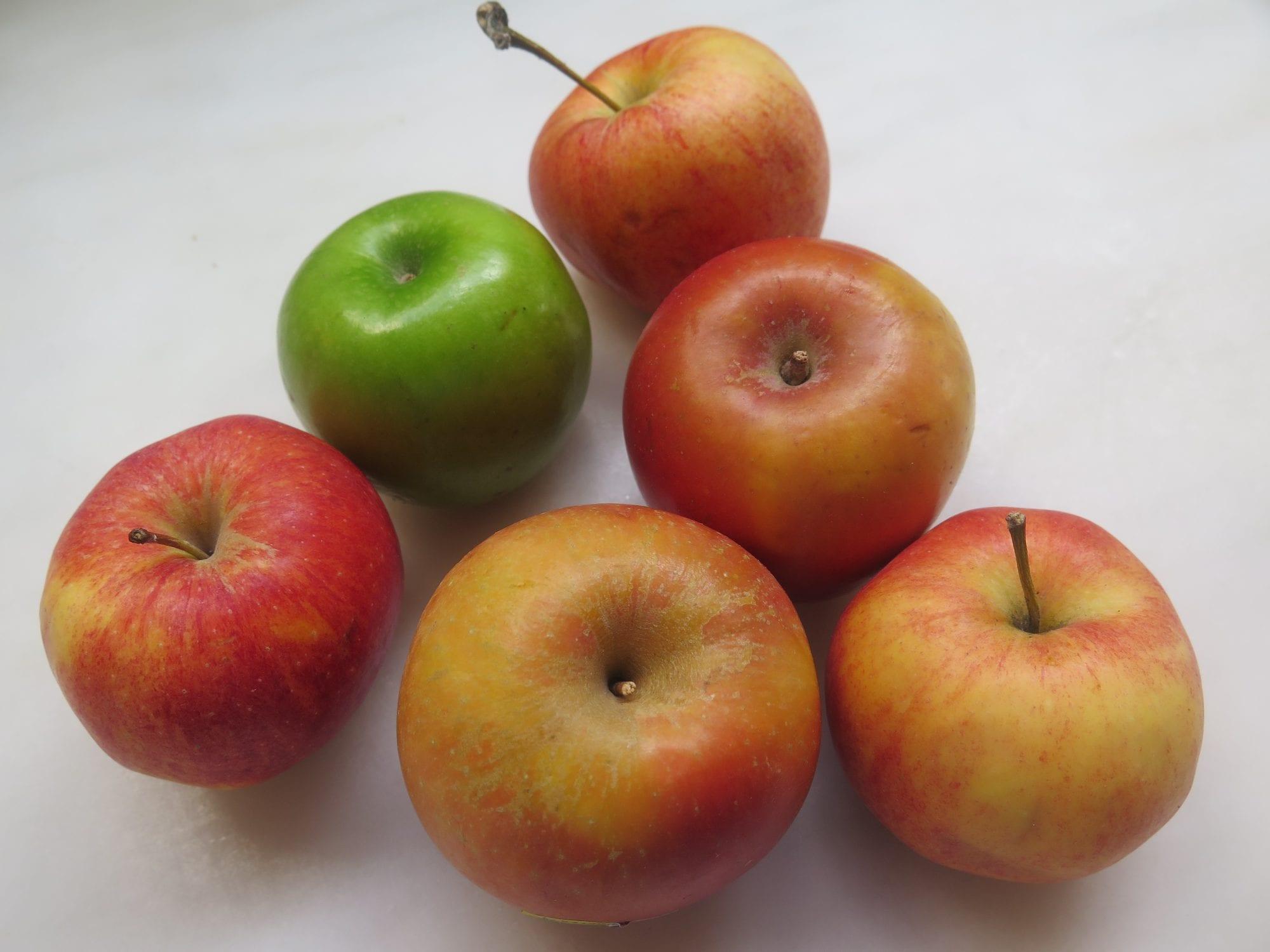 Apples | Jessieh Sheehan Bakes