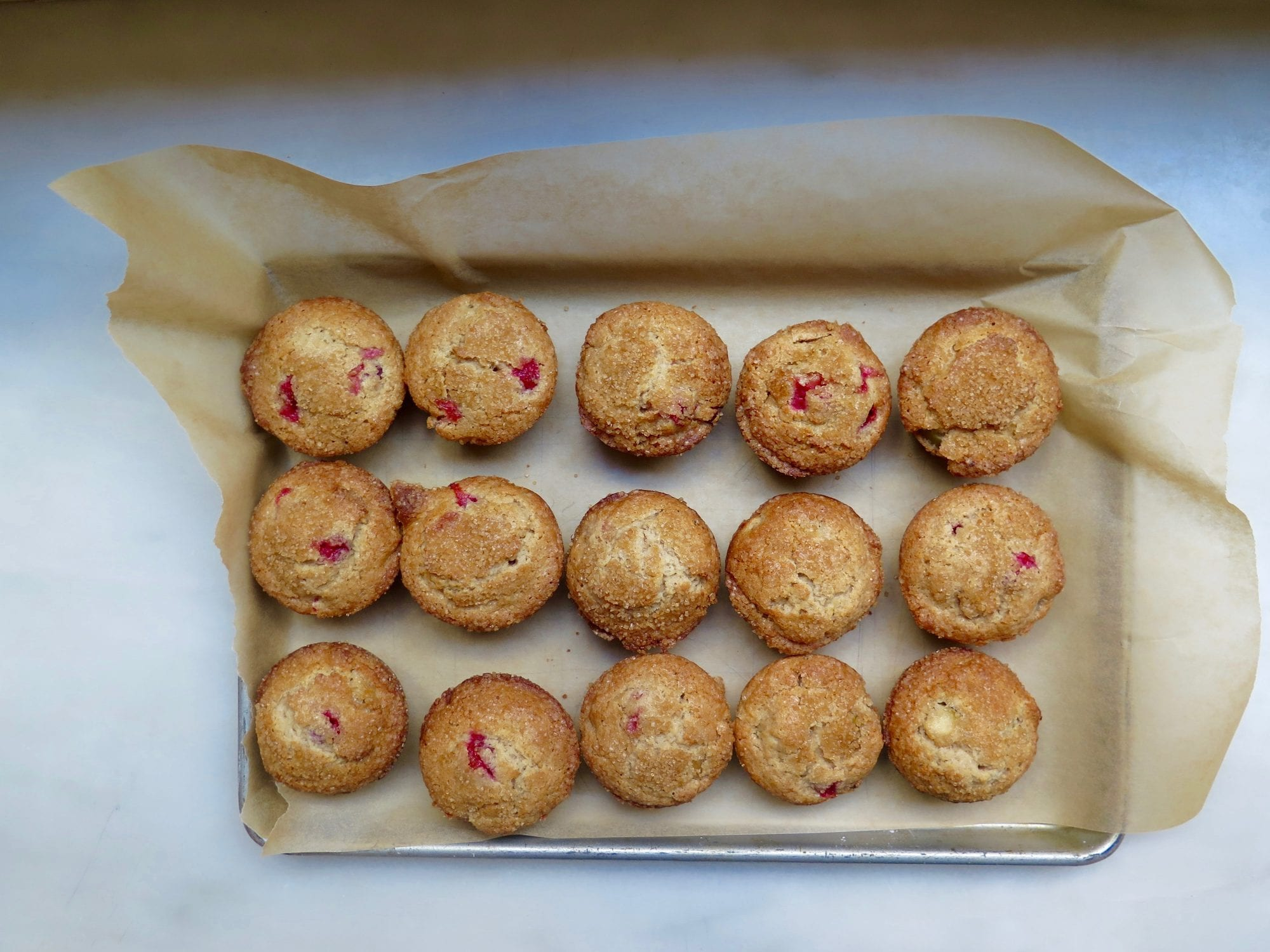 Apple Cranberry Muffins | Jessie Sheehan Bakes